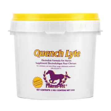 Picture of QUENCH LYTE POWDER RASPBERRY FLV - 2kg