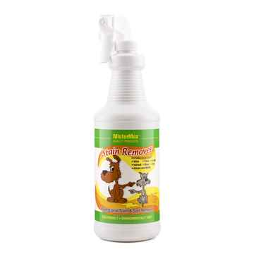 Picture of MISTER MAX STAIN REMOVER - 1qt