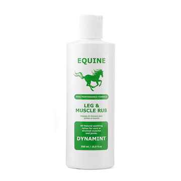 Picture of DYNAMINT EQUINE LEG and MUSCLE RUB - 500ml