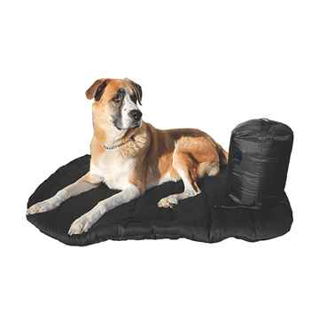 Picture of BACK ON TRACK DOG TRAVEL MATTRESS 80 x 100cm