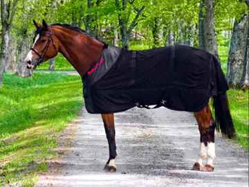 Picture of BACK ON TRACK HORSE MESH RUG 81in