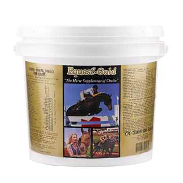 Picture of EQUEST GOLD HORSE - 4kg