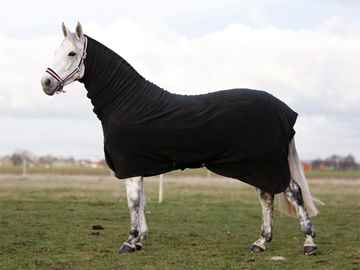Picture of BACK ON TRACK HORSE FLEECE RUG with NECK 78in