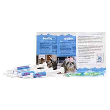 Picture of HEALTHYMOUTH DOG TOOTHPASTE REFILL KIT SMALL BERRY