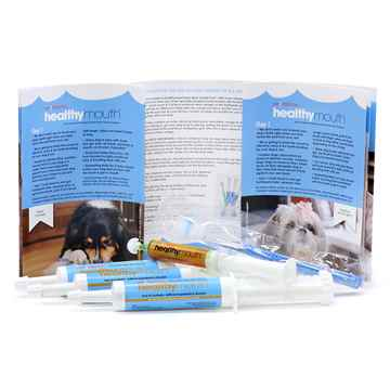 Picture of HEALTHYMOUTH DOG TOOTHPASTE REFILL KIT M/L PEANUT BUTTER