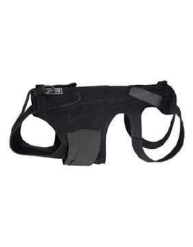 Picture of CANINE LIL BACK BRACER - Small