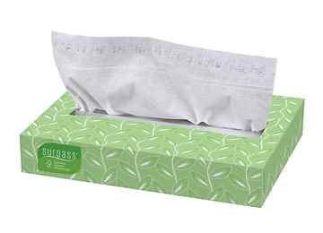 Picture of FACIAL TISSUE SURPASS 2ply 30 x 100 sheets