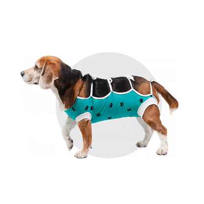 Picture of AFTER SURGERY WEAR VetMedWear 11in - Small