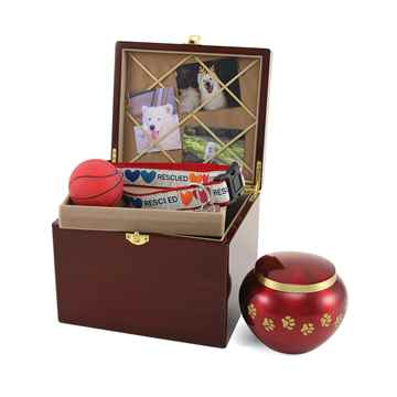 Picture of CREMATION PAW PRINT MEMORY CHEST (J0316MCL) - Large