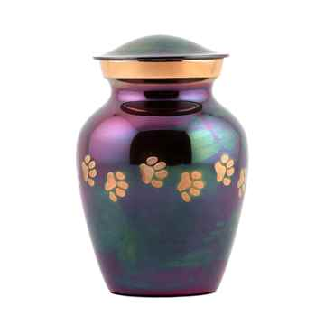 Picture of CREMATION URN Paw Print Raku (J0316CP) - X Small