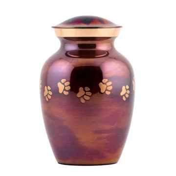 Picture of CREMATION URN Paw Print Raku (J0316CXS) - Small