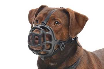 Picture of KRUUSE BASKET MUZZLE Size 4 (272354)