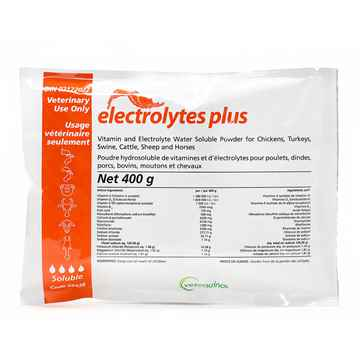Picture of ELECTROLYTES PLUS - 400g