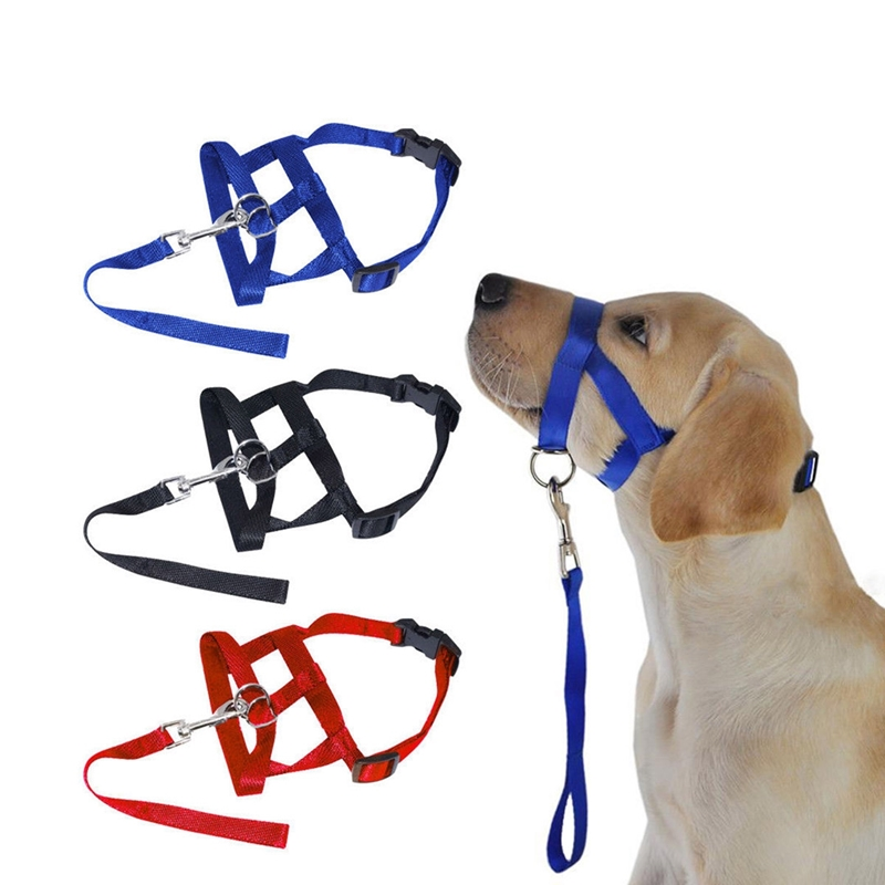 Picture for category Headcollars