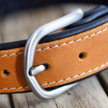 Picture for category Dog Collars