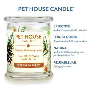 Picture of CANDLE PET HOUSE  One Fur All  Evergreen Forest - 8.5oz