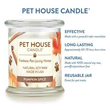 Picture of CANDLE PET HOUSE  One Fur All  Pumpkin Spice - 8.5oz