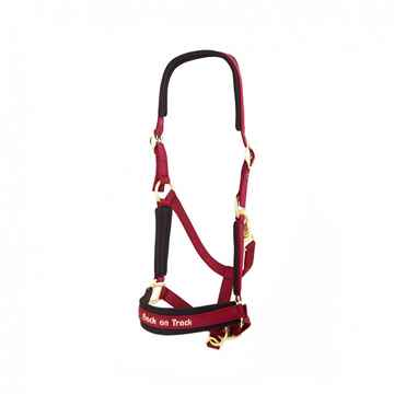 Picture of BACK ON TRACK WERANO HALTER WINE RED COB