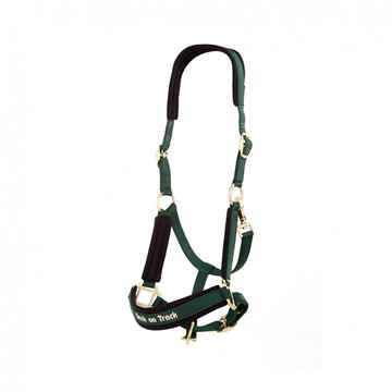 Picture of BACK ON TRACK WERANO HALTER GREEN COB