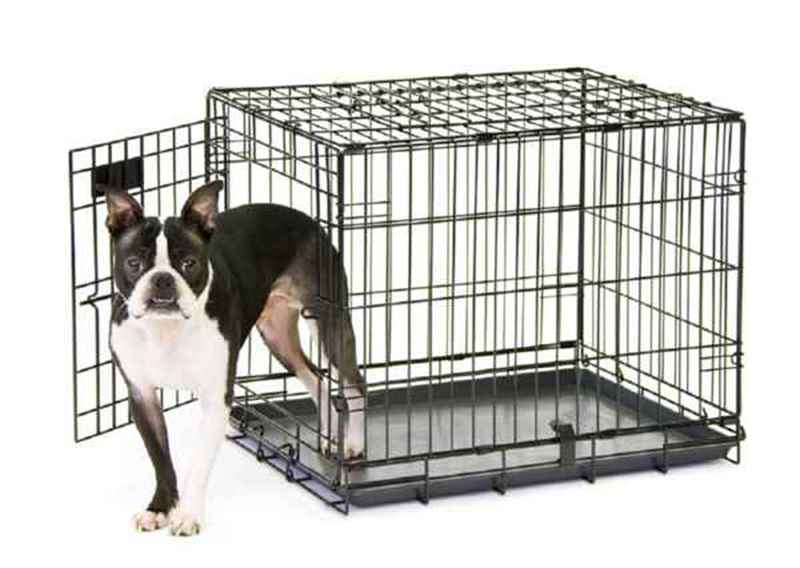 Picture for category Kennels, Pet Beds and Accessories