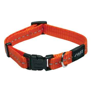 Picture of COLLAR ROGZ UTILITY FIREFLY Orange - 3/8in x 6-8.5in(tu)