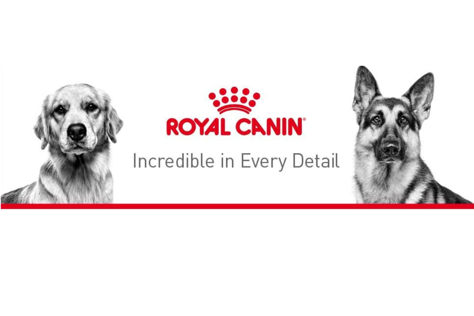 Picture for category Royal Canin