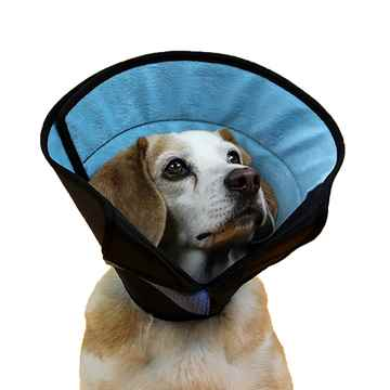 Picture of CALMER COLLAR KVP - Medium
