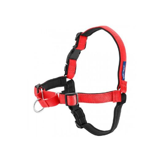 Picture of EASY WALK DELUXE NO PULL HARNESS Medium - Rose Red