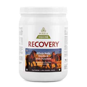 Picture of RECOVERY EQ NUTRACEUTICAL EQUINE POWDER - 1kg