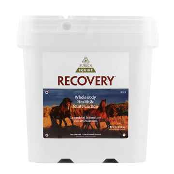 Picture of RECOVERY EQ NUTRACEUTICAL EQUINE POWDER - 5kg