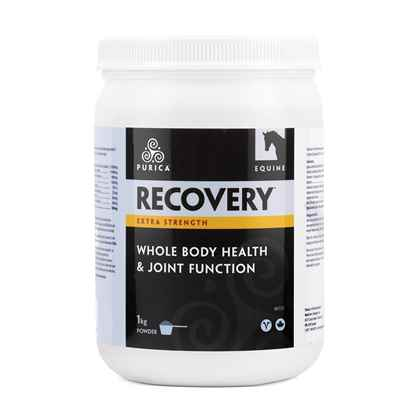 Picture of RECOVERY NUTRACEUTICAL EQUINE HA EXTRA STRENGTH - 1kg
