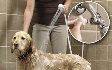 Picture of PET SHOWER DELUXE w/8 foot hose - ea
