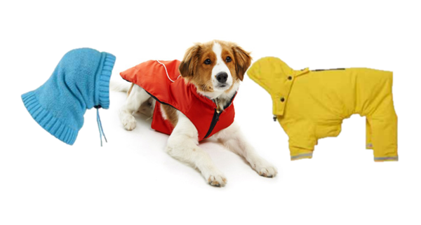 Picture for category Coats, Rain gear and Scarves