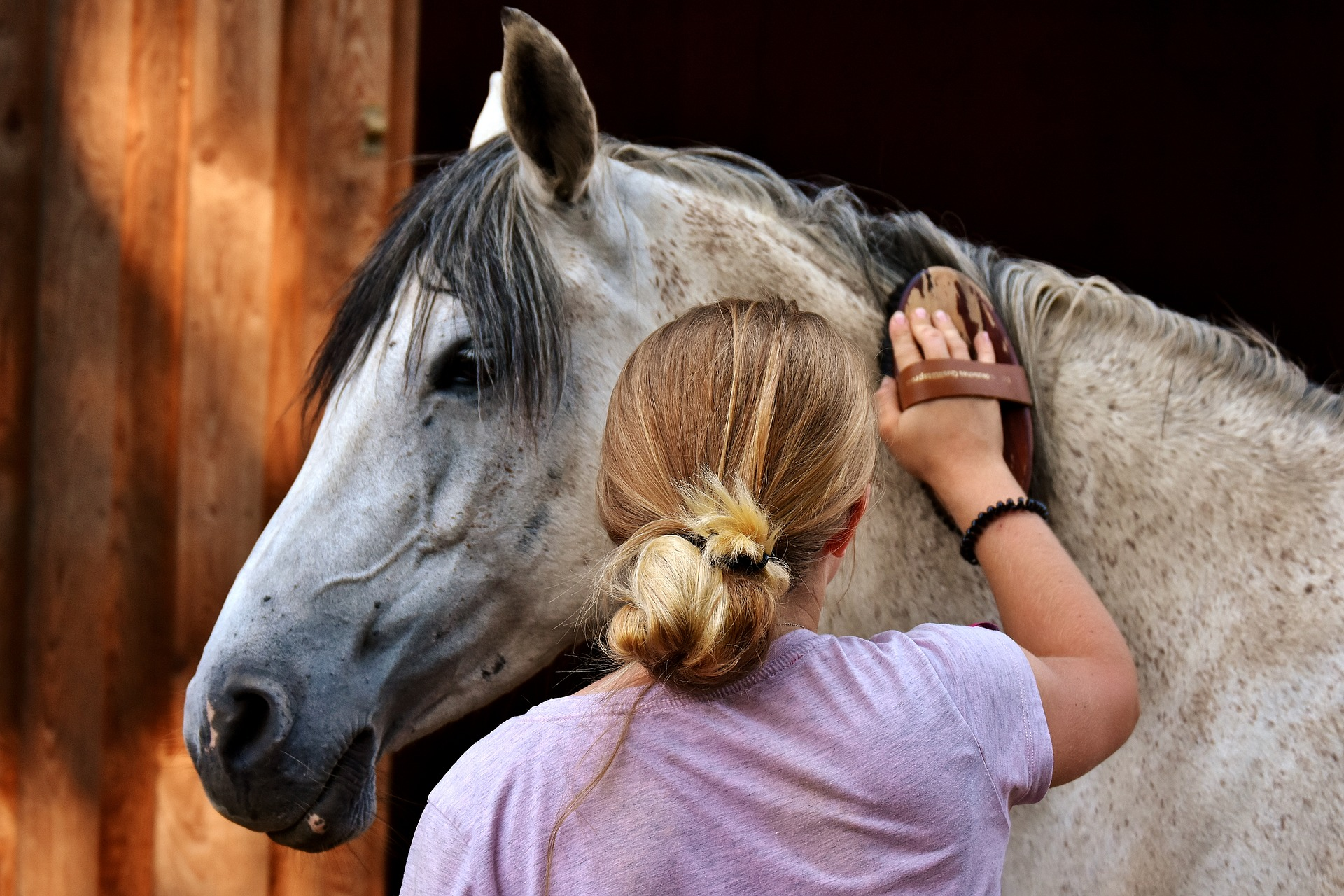 Picture for category Equine Retail
