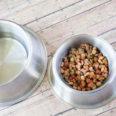 Picture for category Dog Bowls & Food Storage