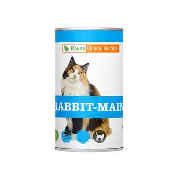 Picture of FELINE RAYNE RABBIT MAINTENANCE - 24 x 156gm