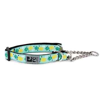 Picture of COLLAR RC Training Adjustable Pineapple Parade - 5/8in x 7-9in