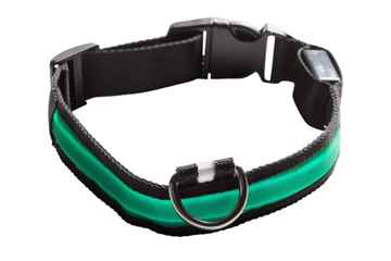 Picture of COLLAR EYENIMAL LED LIGHTED COLLAR  Medium - Green(nr)