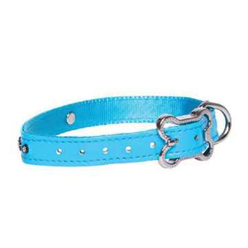 Picture of COLLAR ROGZ LAPZ LUNA PIN BUCKLE Blue - 1/2in x 8.7-11in