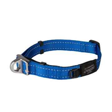 Picture of COLLAR ROGZ SAFETY CONTROL FANBELT Blue -  3/4in x 13-19in(tu)