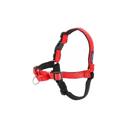 Picture of EASY WALK DELUXE NO PULL HARNESS Large - Rose Red