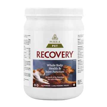 Picture of RECOVERY NUTRACEUTICAL CANINE/FELINE POWDER - 1kg