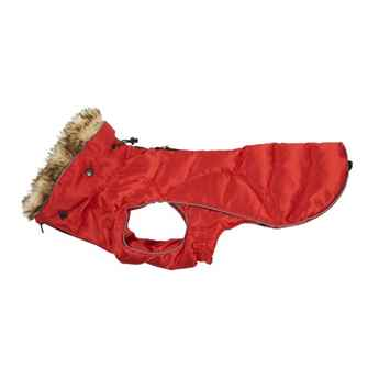 Picture of COAT BUSTER ACTIVE DOG High Risk Red - Small/Medium