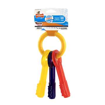 Picture of NYLABONE PUPPY TEETHING KEYS (N221) - Large