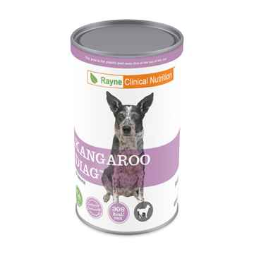 Picture of CANINE RAYNE KANGAROO DIAGNOSTIC - 12 x 369gm