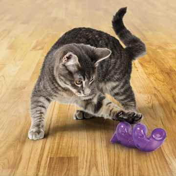 Picture of TOY CAT KONG BAT-A- BOUT Spiral