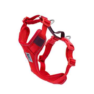 Picture of MOTO CONTROL HARNESS  Goji Berry/Burgundy - Large