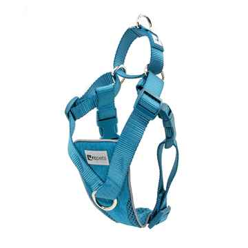 Picture of HARNESS TEMPO NO PULL Medium - Heather Teal