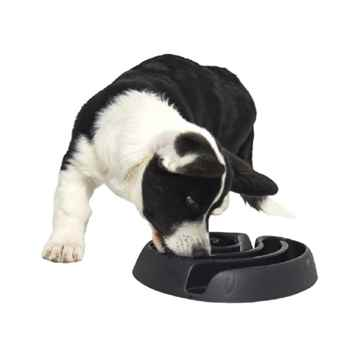 Picture of BOWL BUSTER DOGMAZE Mini - Black