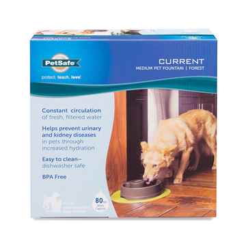 Picture of PETSAFE CURRENT FOUNTAIN Forest Green - Medium